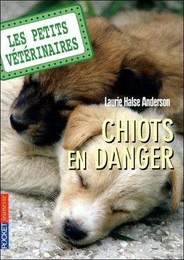 Couverture du livre : Les Petits Vétérinaires, Tome 1 : Chiots en danger