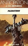 FNA -914- Palowstown