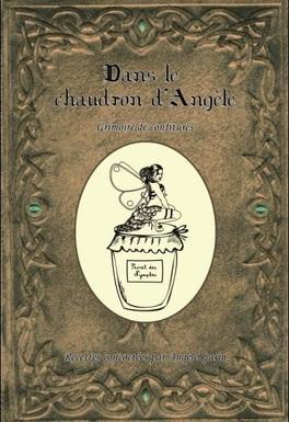 Couverture du livre : Dans le chaudron d'Angèle