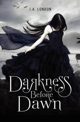 Couverture du livre : Darkness Before Dawn, Tome 1
