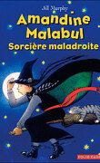 Amandine Malabul, Tome 1 : Sorcière maladroite
