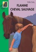 L'Étalon noir, Tome 4 : Flamme, cheval sauvage