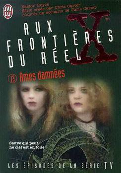 Couverture du livre : Aux frontières du réel, Tome 13 : Ames damnées