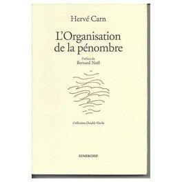 Couverture du livre : L'organisation de la pénombre