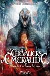 couverture Les Chevaliers d'Émeraude, tome 8 : Les Dieux déchus