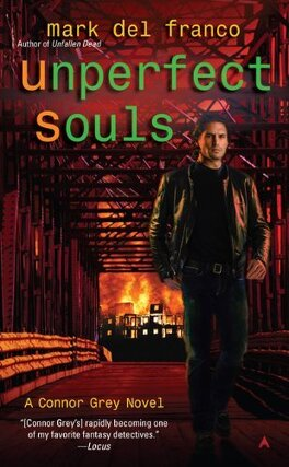Couverture du livre : Connor Grey, Tome 4 : Unperfect Souls
