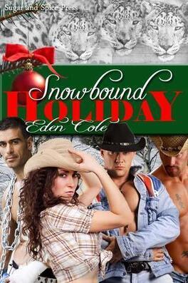 Couverture du livre : Snowbound Holiday