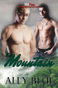 Couverture du livre : The Mountain