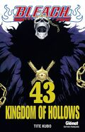 Bleach, Tome 43 : Kingdom of Hollows