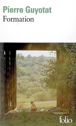 Couverture du livre : Formation