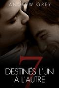 Sept jours, Tome 1 : Destinés l'un à l'autre