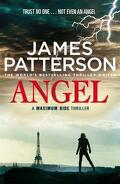 Maximum Ride, Tome 7 : Angel