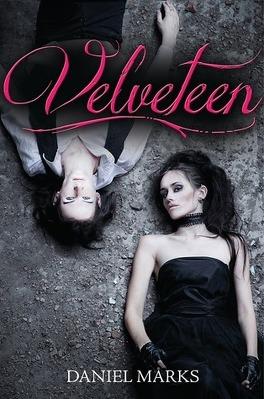 Couverture du livre : Velveteen