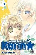 Kamichama Karin, Tome 3