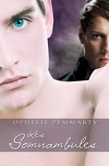 Les Somnambules, Tome 1