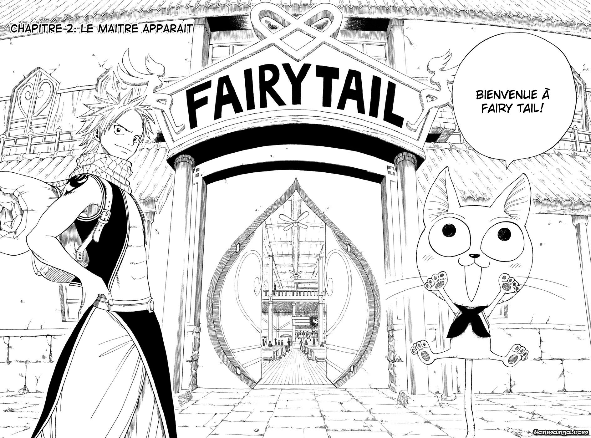 Couvertures Images Et Illustrations De Fairy Tail Tome 1