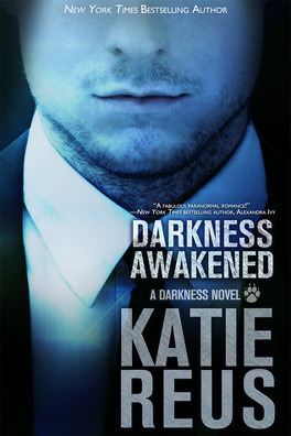 Couverture du livre : Darkness, Tome 1 : Darkness Awakened