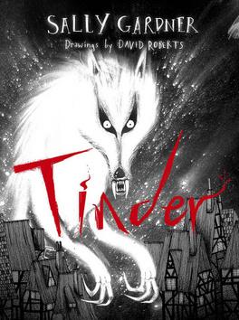 Couverture du livre : Tinder