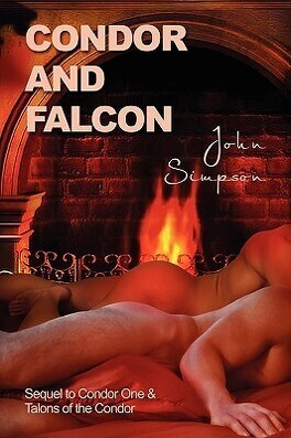 Couverture du livre : L'Homme du Président, Tome 3 : Condor and Falcon