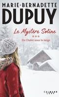 Le Mystère Soline, Tome 3 : Un chalet sous la neige