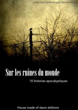 Couverture du livre : sur les ruines du monde