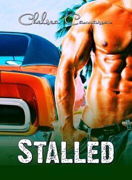 Couverture du livre : Love & Repair, Tome 3.5 : Stalled