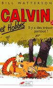 Calvin et Hobbes, tome 20 : Il y a des trésors partout !