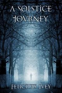 Couverture du livre : A solstice Journey
