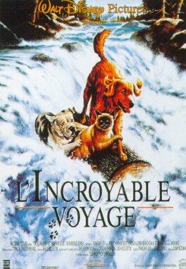 Couverture du livre : L'Incroyable Voyage