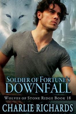 Couverture du livre : Wolves of Stone Ridge, Tome 18 : Soldier of Fortune's Downfall