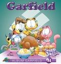 Garfield, Album 14