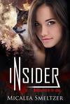 Outsider, Tome 2 : Insider