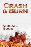 couverture La série Ty et Zane, Tome 9 : Crash & Burn