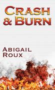 La Série Ty et Zane, Tome 9 : Crash & Burn