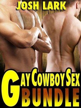 Couverture du livre : Gay Cowboy Sex Bundle