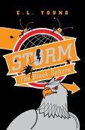 Storm : qui sème le vent récolte la tempête : Volume 3, Black Sphere