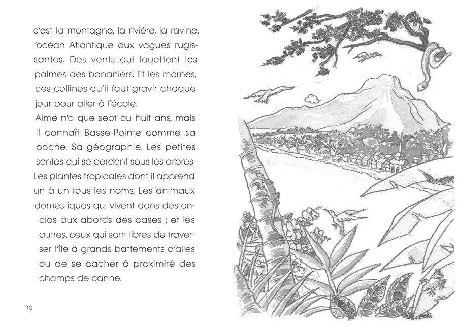 Couvertures Images Et Illustrations De Aimé Césaire Un