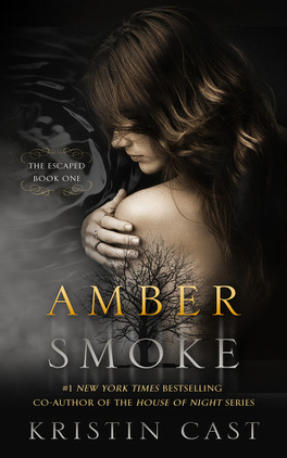 Couverture du livre : The Escaped, Tome 1 : Amber Smoke