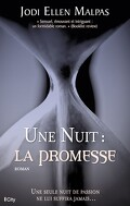 Une nuit, Tome 1 : La Promesse