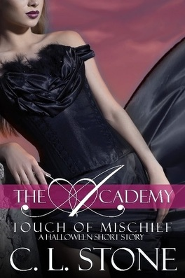 Couverture du livre : The Academy, Tome 7,5: Touch of Mischief