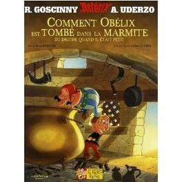 Couverture du livre : Comment Obélix est tombé dans la marmite du druide quand il était petit
