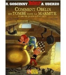 comment obelix est tombe dans la marmite