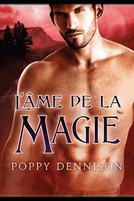 Couverture du livre : Les Triades, Tome 3 : L'âme de la magie