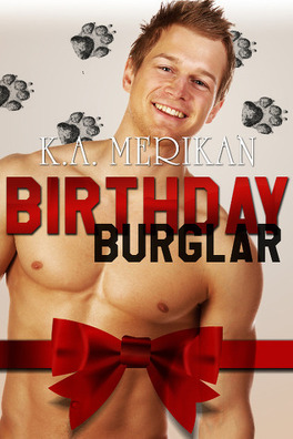 Couverture du livre : Birthday Burglar
