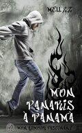 Mon humour fascinant, tome 2 : Mon Panaris à Panamà