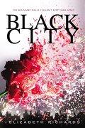 Black City, tome 1 : Black City