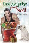 couverture Une Surprise pour Noël
