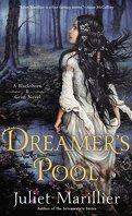 Blackthorn & Grim, Tome 1 : Dreamer's Pool