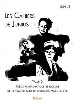 Couverture de Les Cahiers de Junius - Tome 2