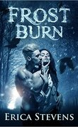 The Fire and Ice Series, Book 1: Frost Burn